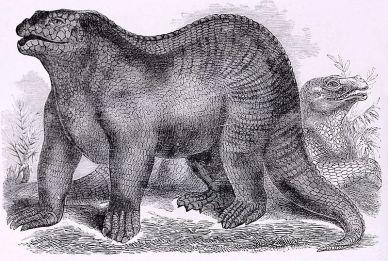 Goodrich_Iguanodon